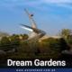 Dream Gardens Lahore