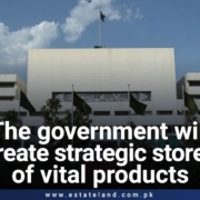 The government will create strategic stores of vital products