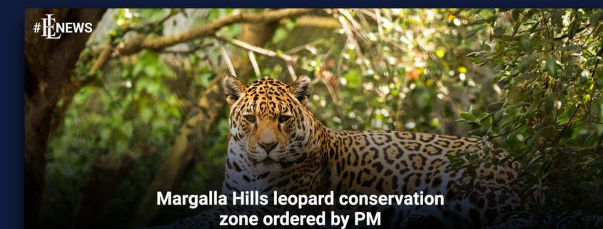 Margalla Hills leopard conservation zone ordered by PM